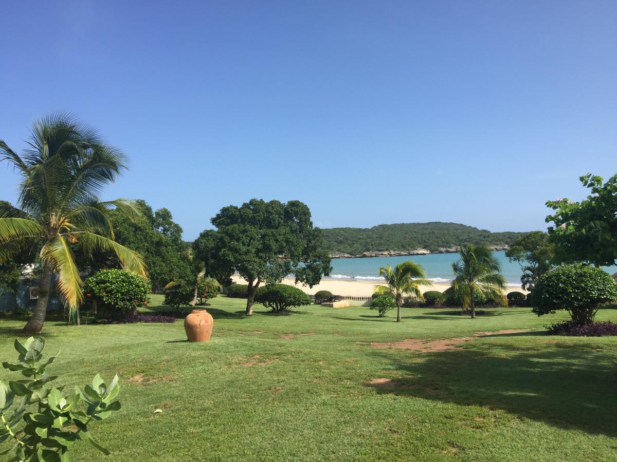 Coquina_Treasure_Beach_Jamaica_12.jpg