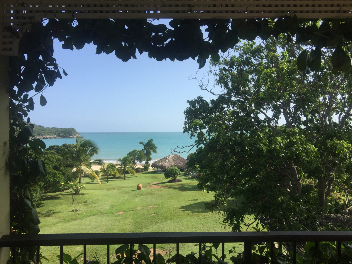 Coquina_Treasure_Beach_Jamaica_14.jpg