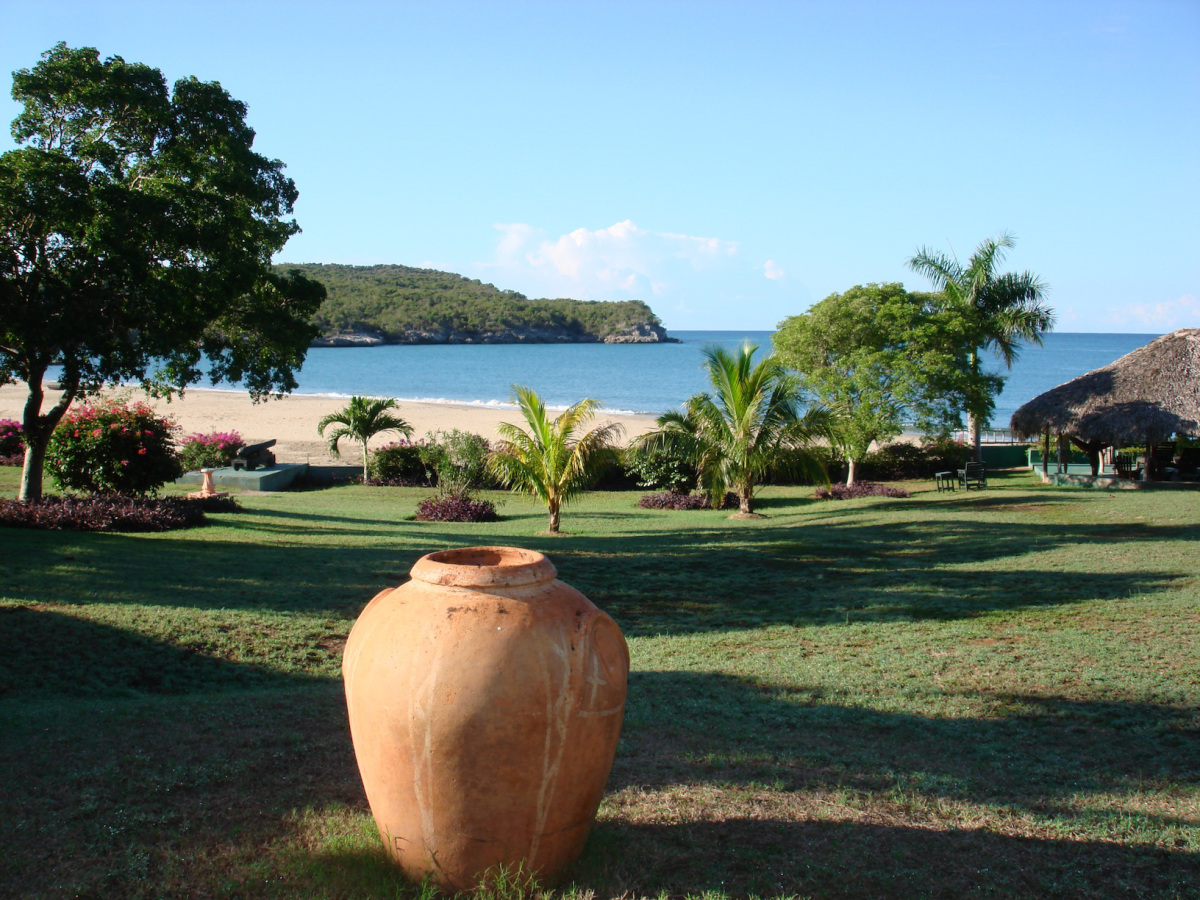 Coquina_Treasure_Beach_Jamaica_17.jpg