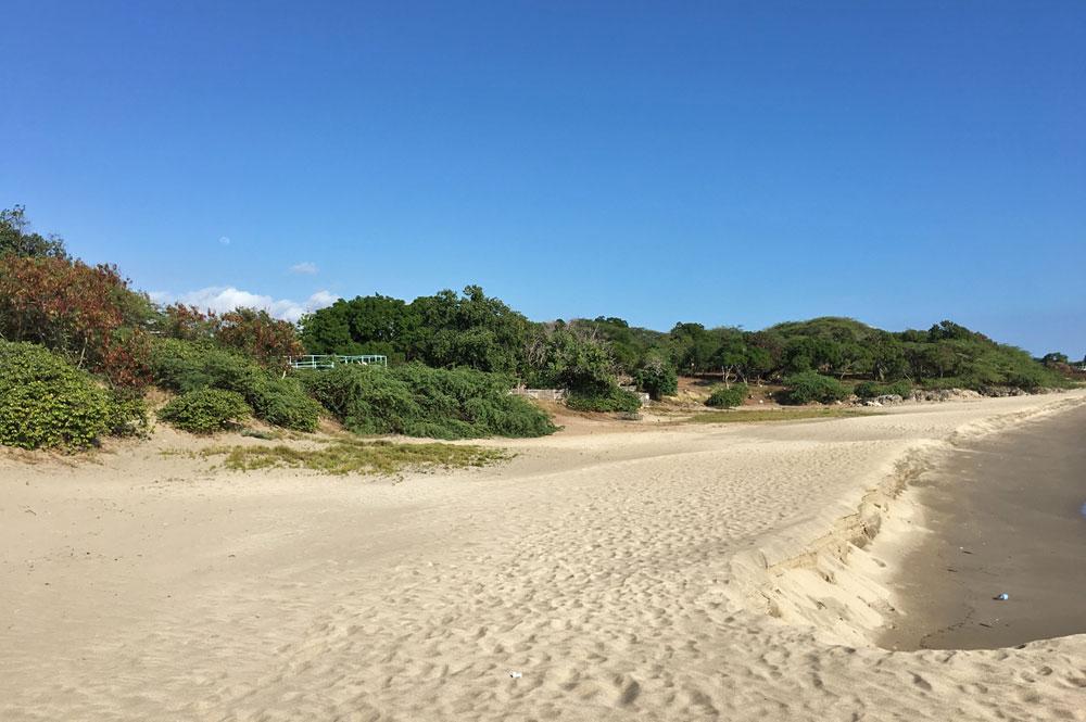 Bliss_By_The_Sea_Treasure_Beach_JA_57.jpg