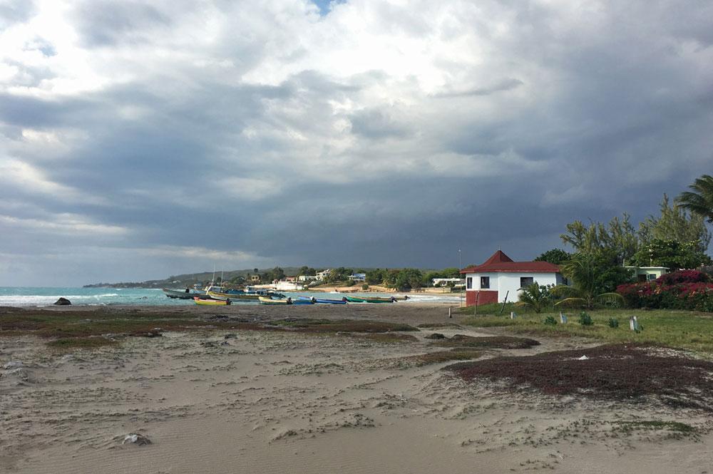 Mar_Blue_Beach_Treasure-Beach_06.jpg