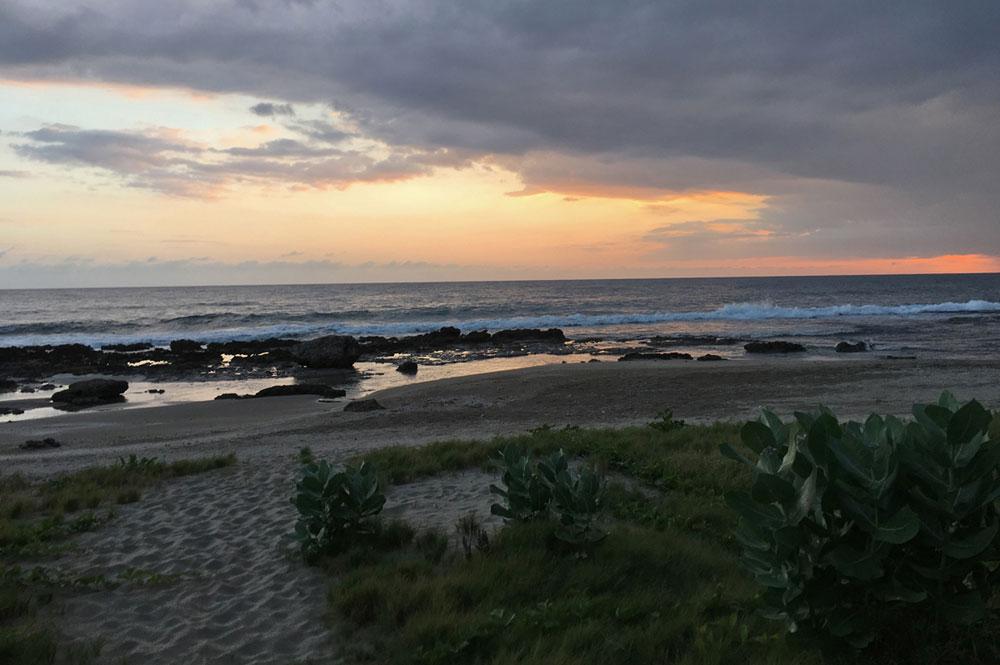 Mar_Blue_Beach_Treasure-Beach_08.jpg