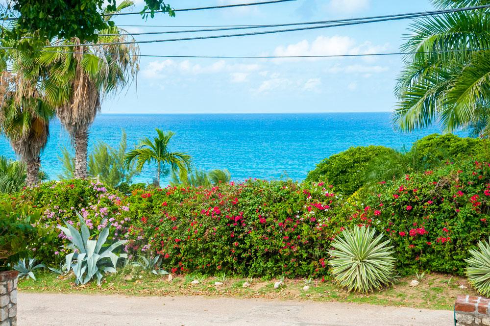 MissP's_SilverSands_Jamaica_01.jpg