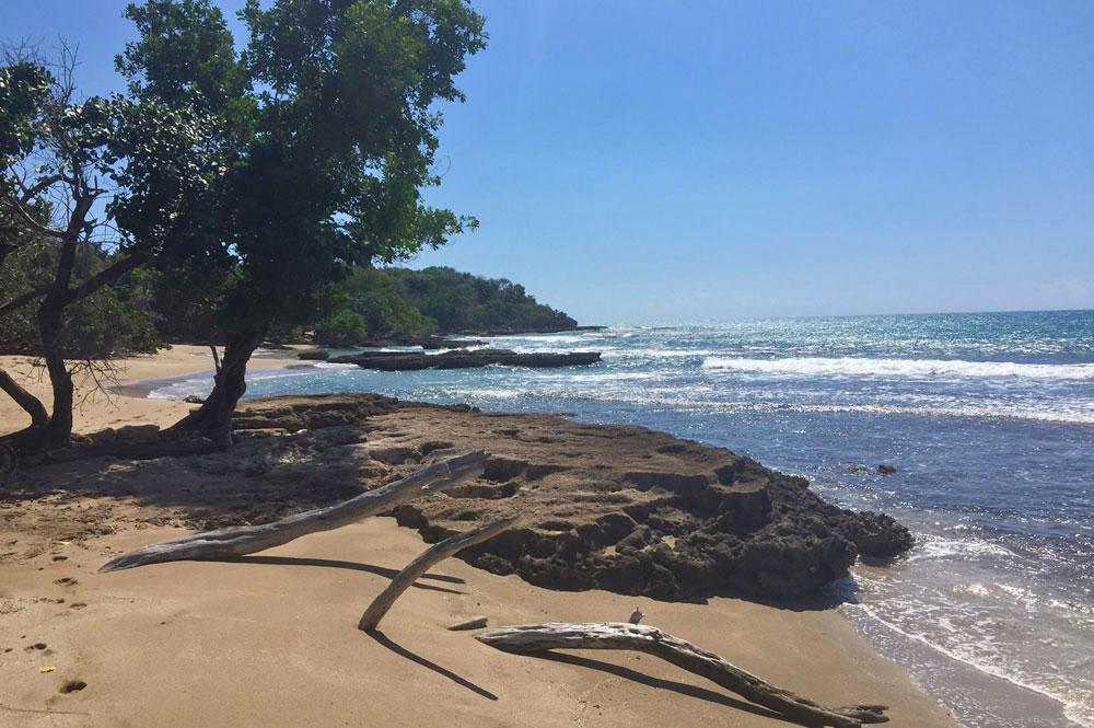 Villa_Arcadia_FortCharles_Treasure_Beach_029.jpg