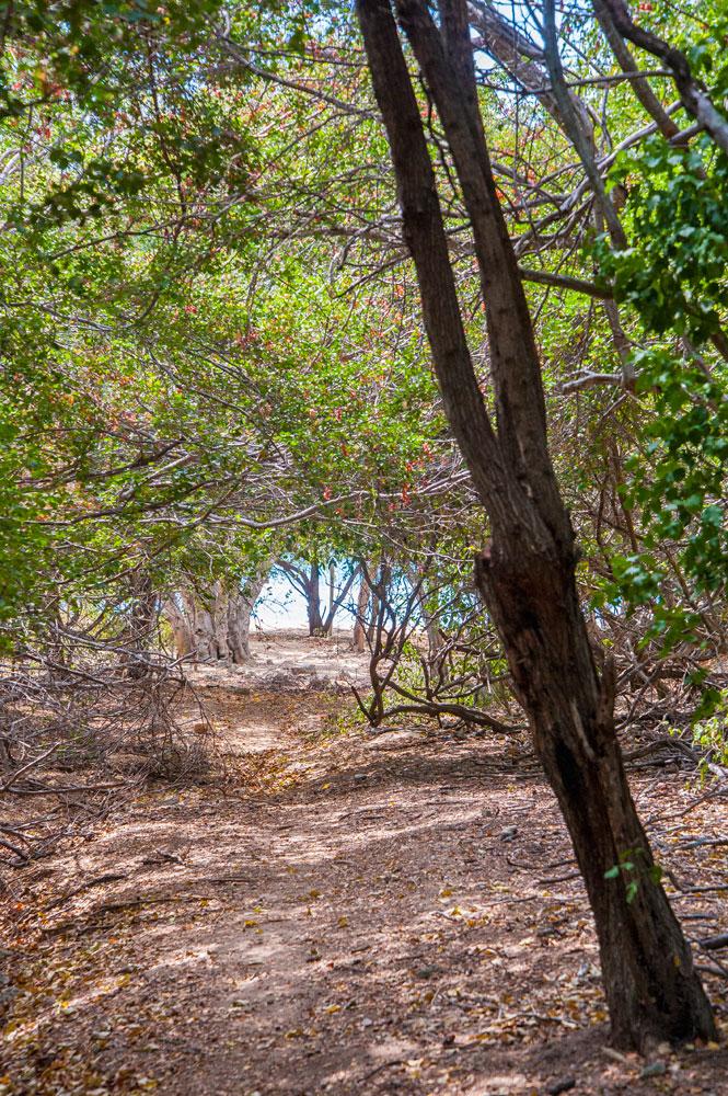 Villa_Arcadia_FortCharles_Treasure_Beach_042.jpg
