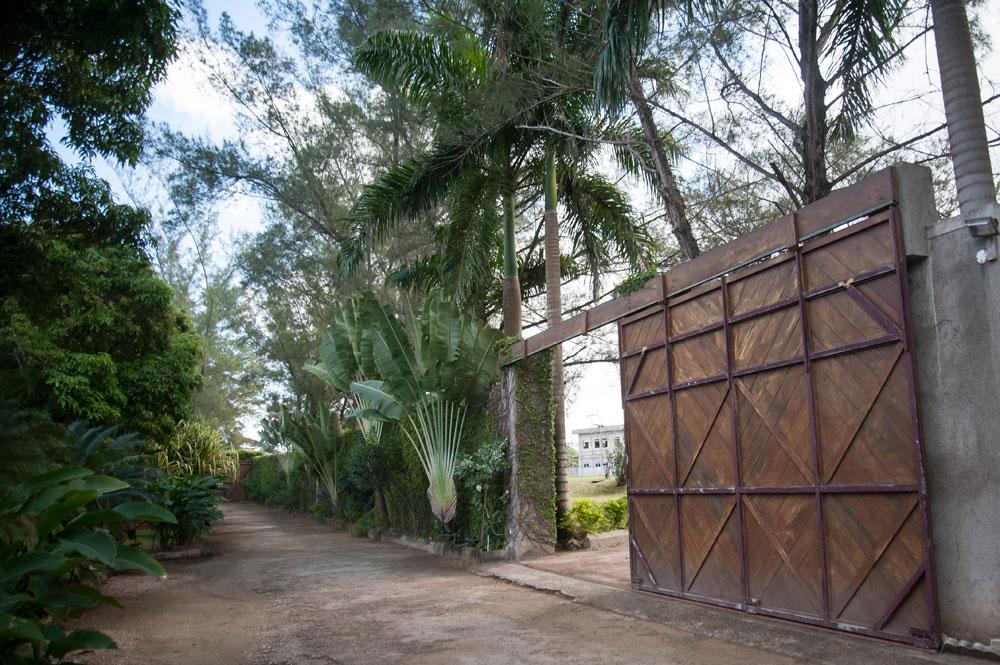 Siesta_Runaway_Bay_Jamaica_41.jpg