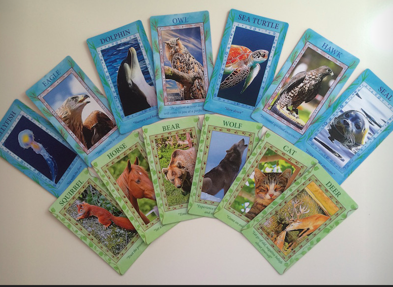 "Visit the Gamecrafter site to see The Animal Spirit Deck  created by student Andi Rondestvedt  ""WOW, thank you so much Mellie for this course - I had a great time!! Feels amazing when you hit the publish button!! Thank you! Thank you! Thank you! I never used Photoshop before and know I'm not so good at technical stuff. That's how GREAT this course is! BIG HUG."""