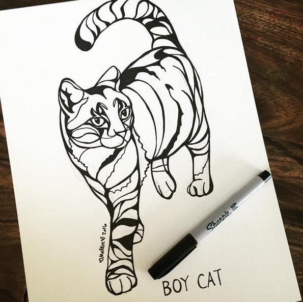 boycat.png