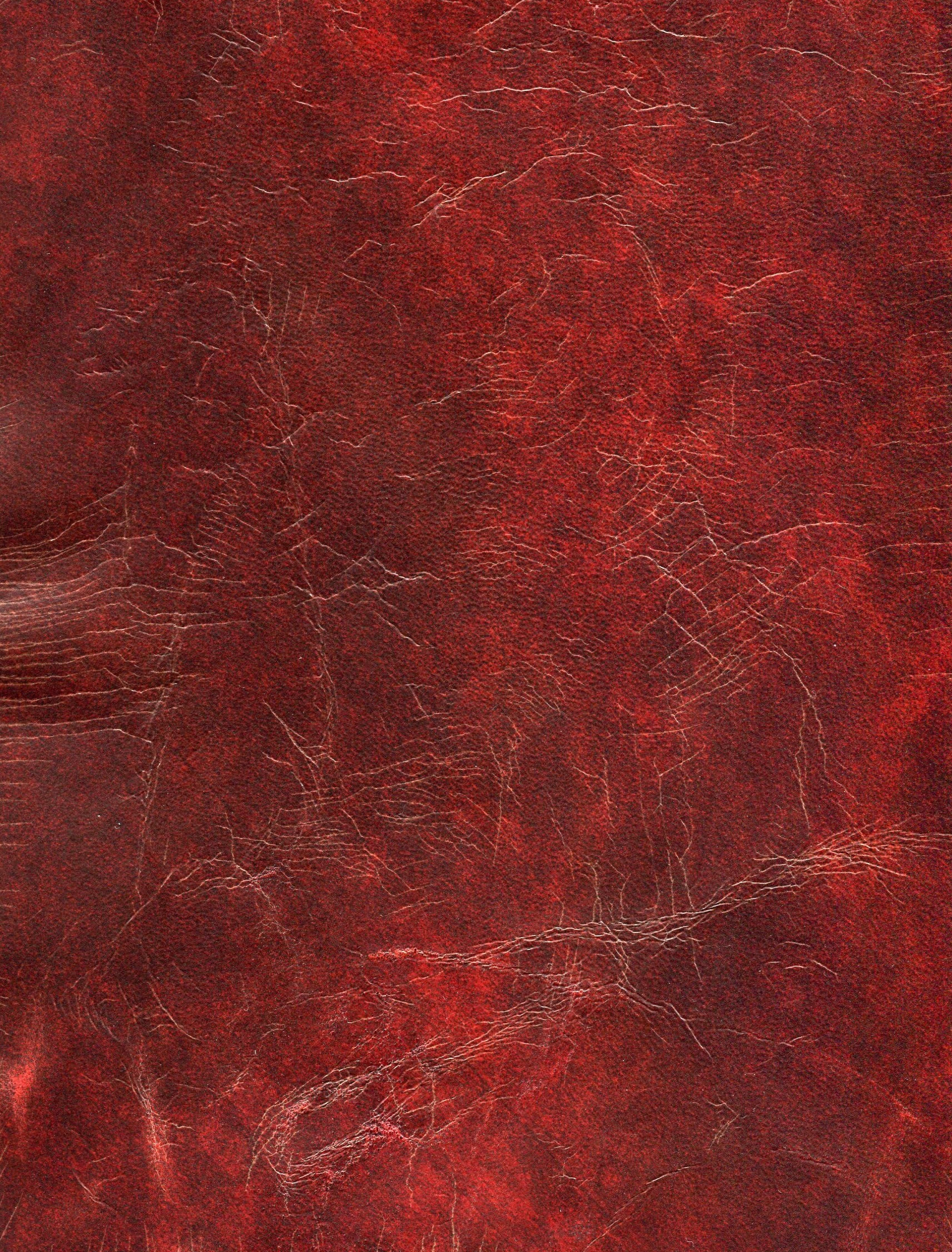 Ox Blood.jpg