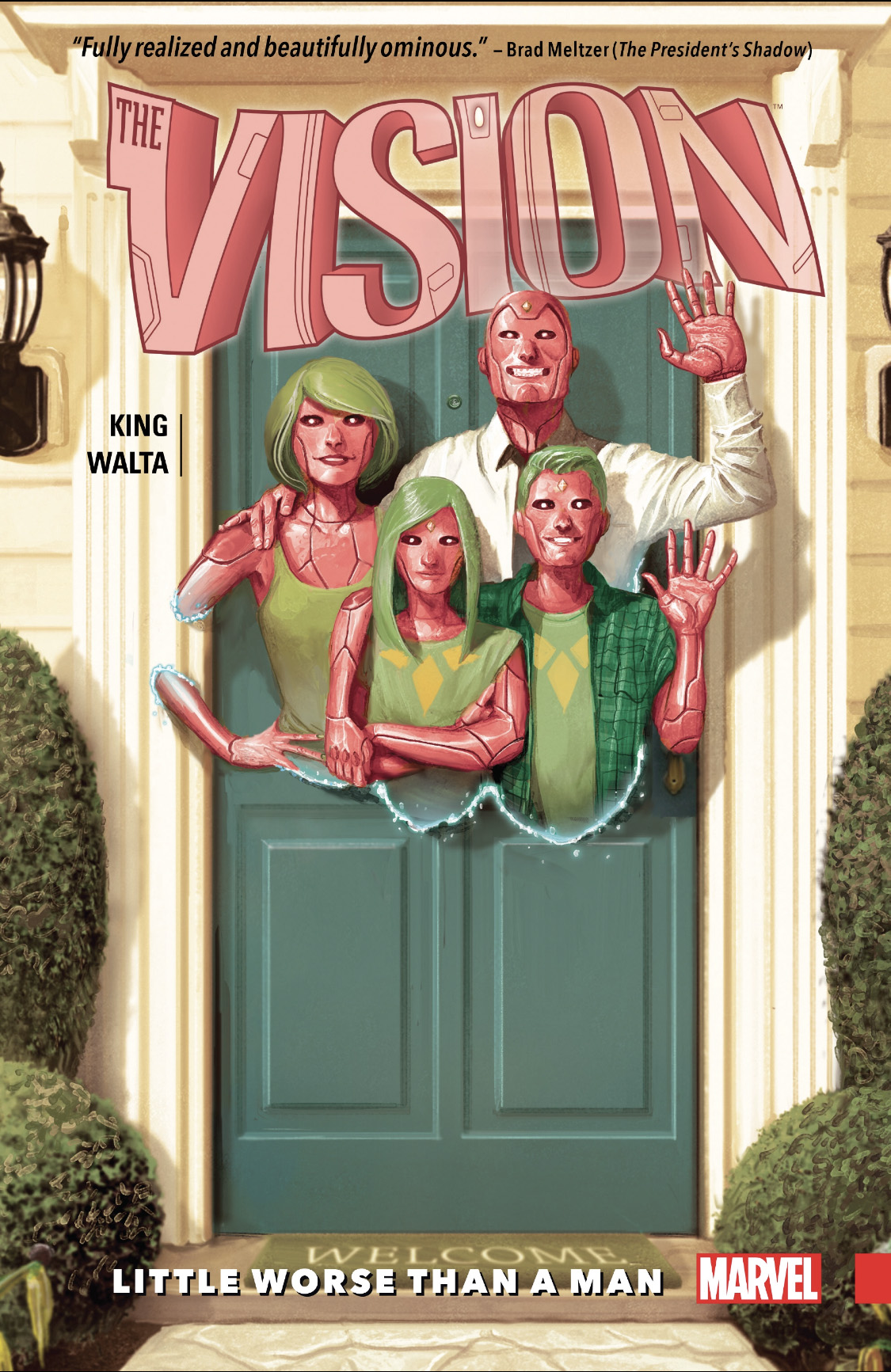 the-vision-cover-full.jpg