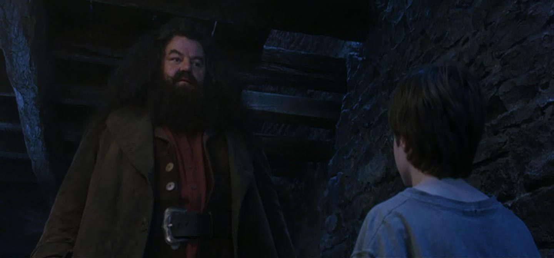 Yer a wizard, 'arry