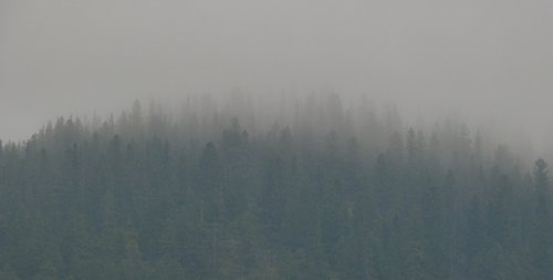 Protect Your Lungs During CA Fires