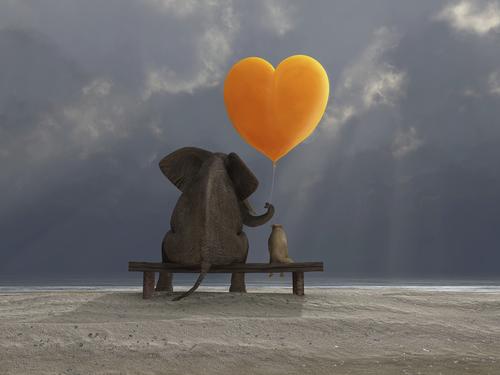 Maitri: Radiate Loving Kindness This Holiday