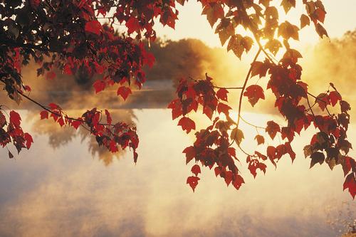Happy Autumnal Equinox!