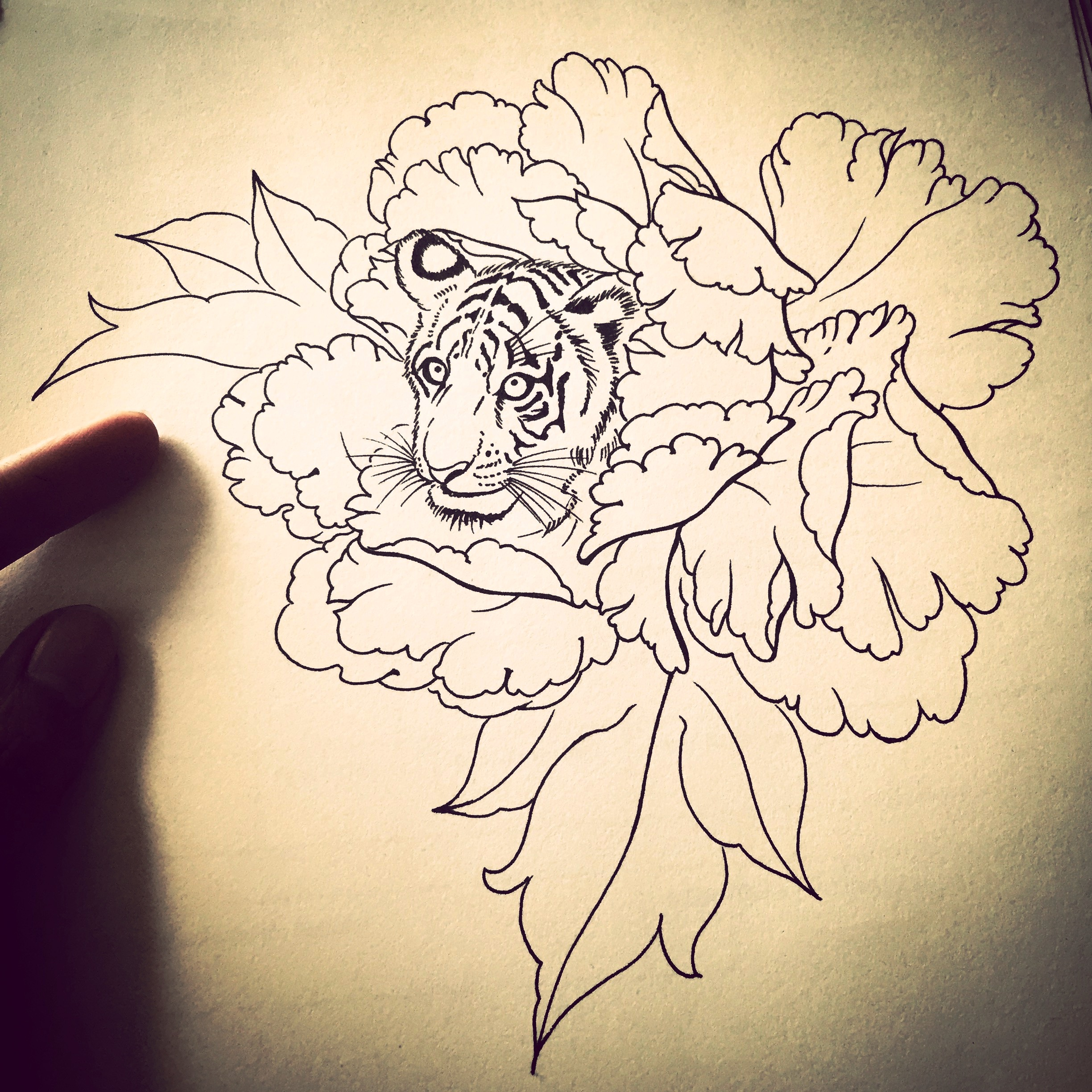 tiger-flowers-drawing.jpg