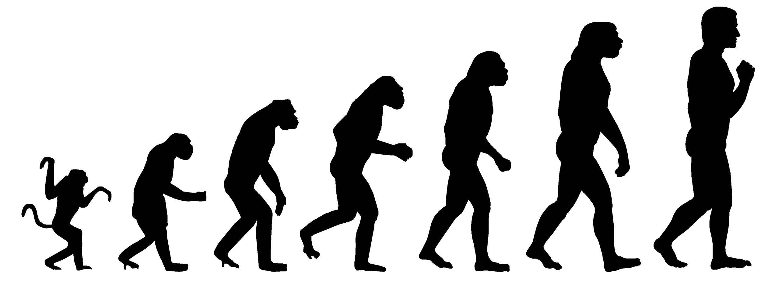evol.jpg