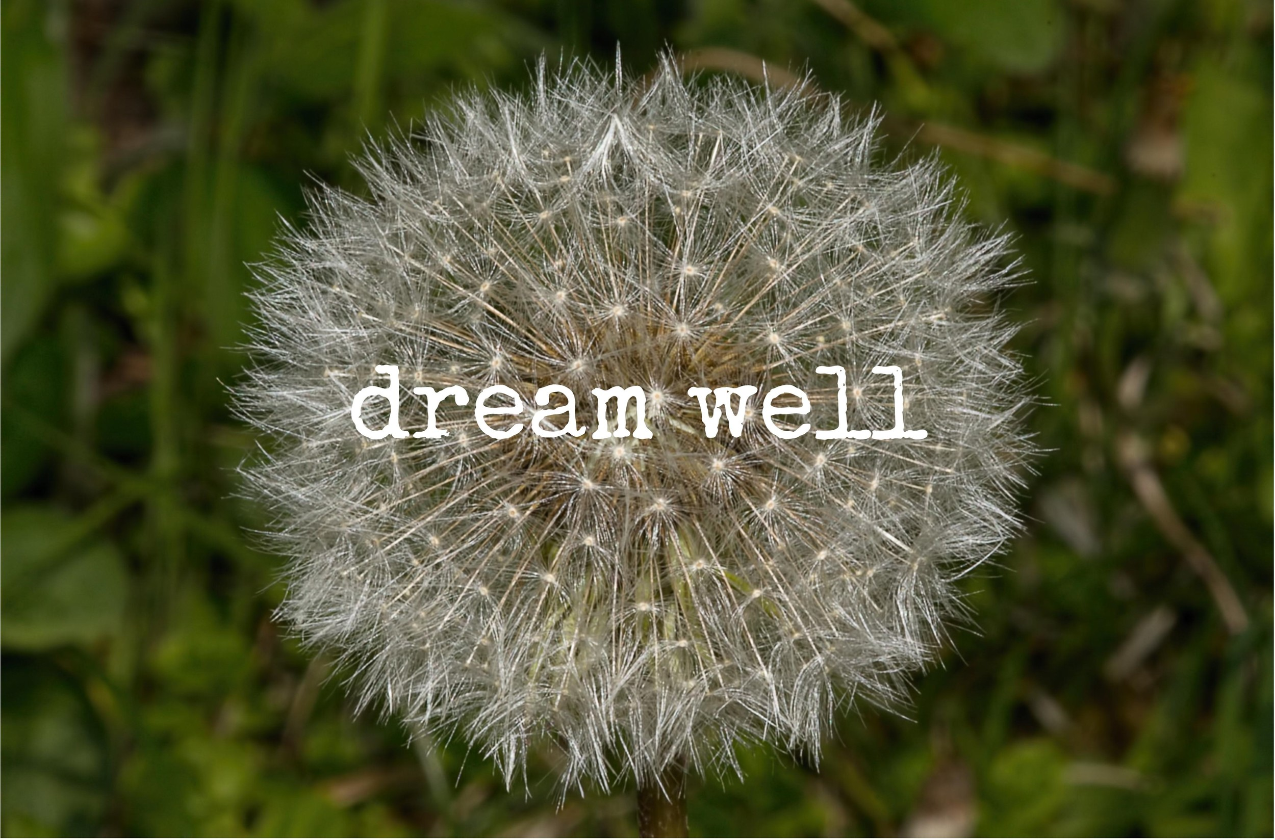 Dream Well