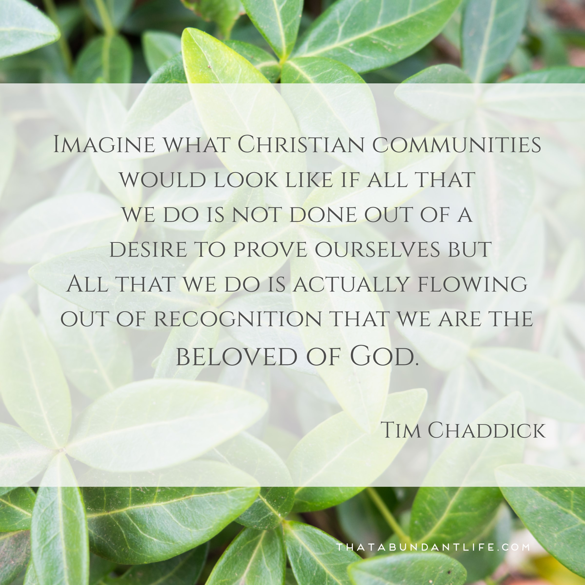 Tim Chaddick Quote 07292015.jpg