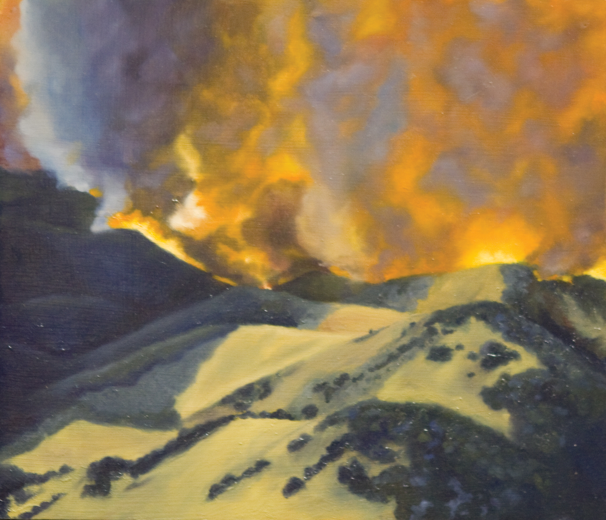 The Hills Are Burning 2010.jpg