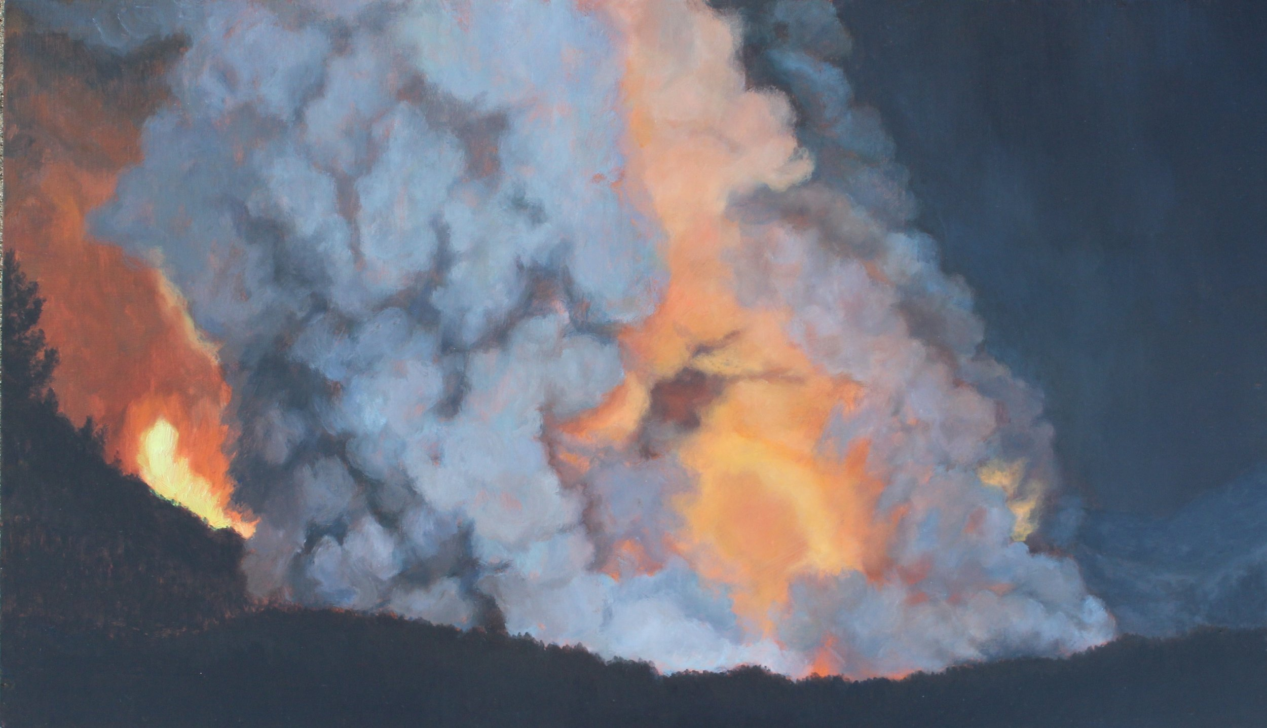 Sleepless Fire 2013 14x27''.JPG
