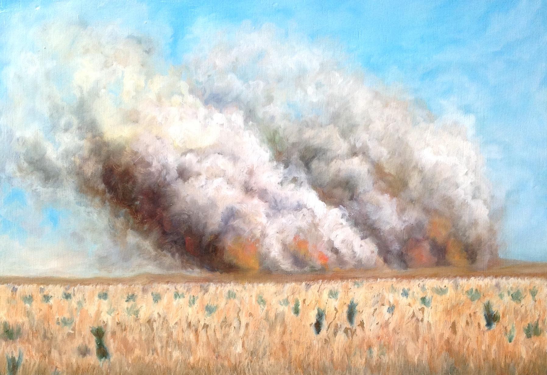 Burning Prairie oil on panel 9x13 2011 .jpg