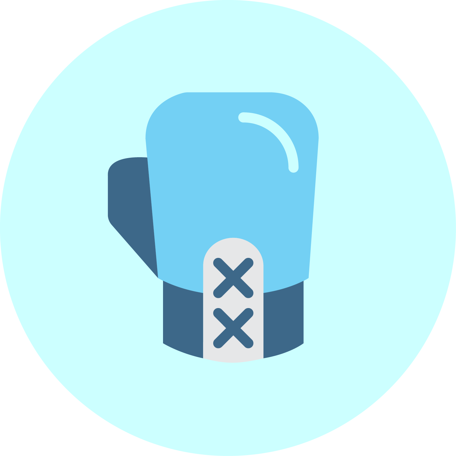 Boxing Glove.png
