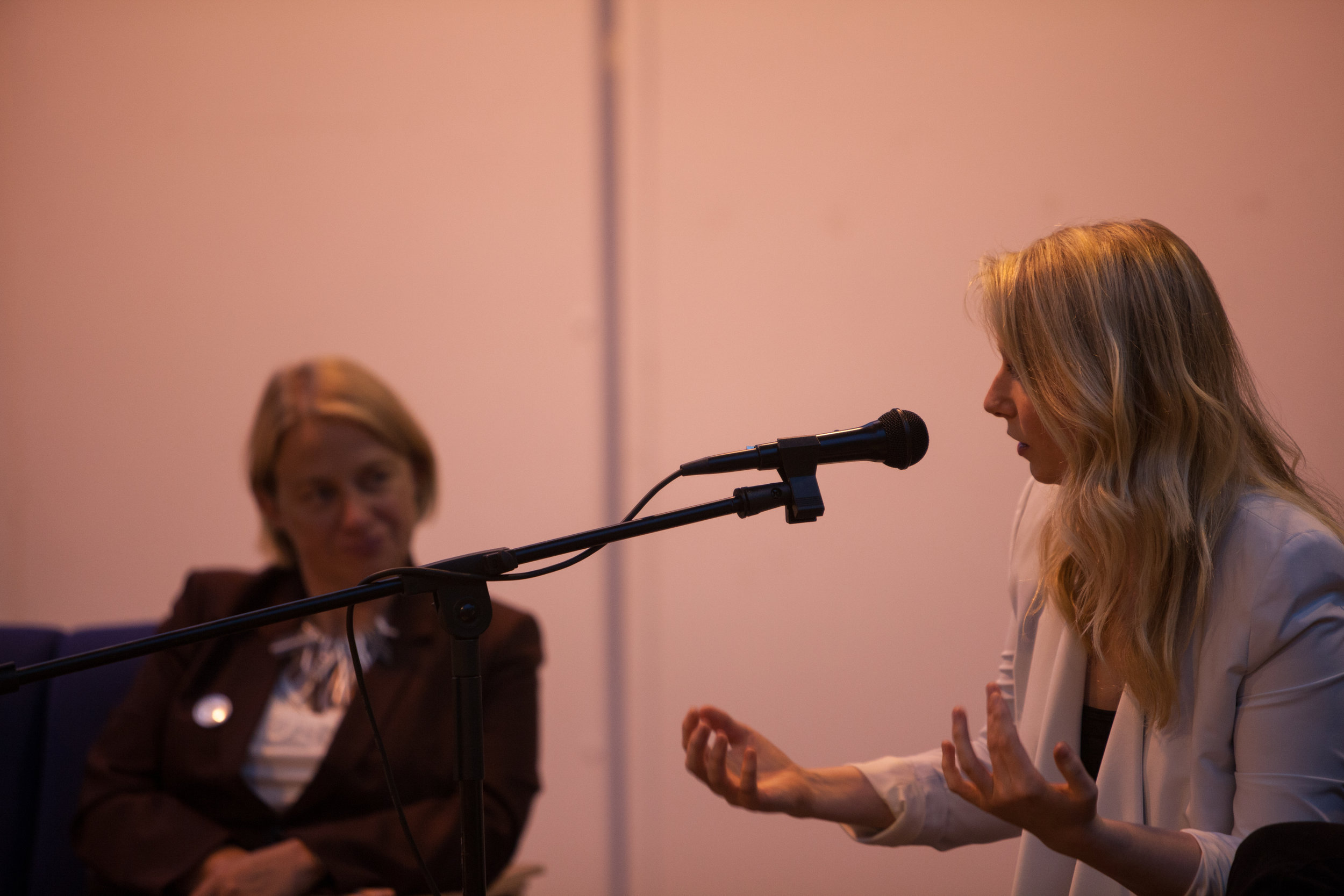 Panel Guest, Scottish Green Party event, Out of the Blue, Leith, 2013