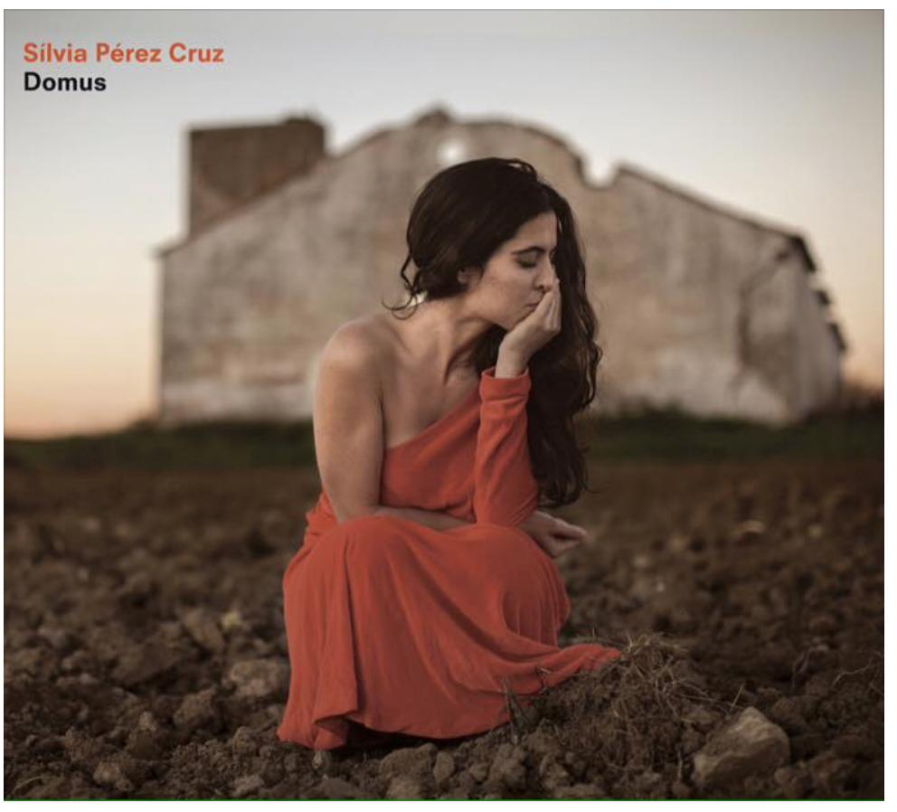 Silvia Perez Cruz Domus.png