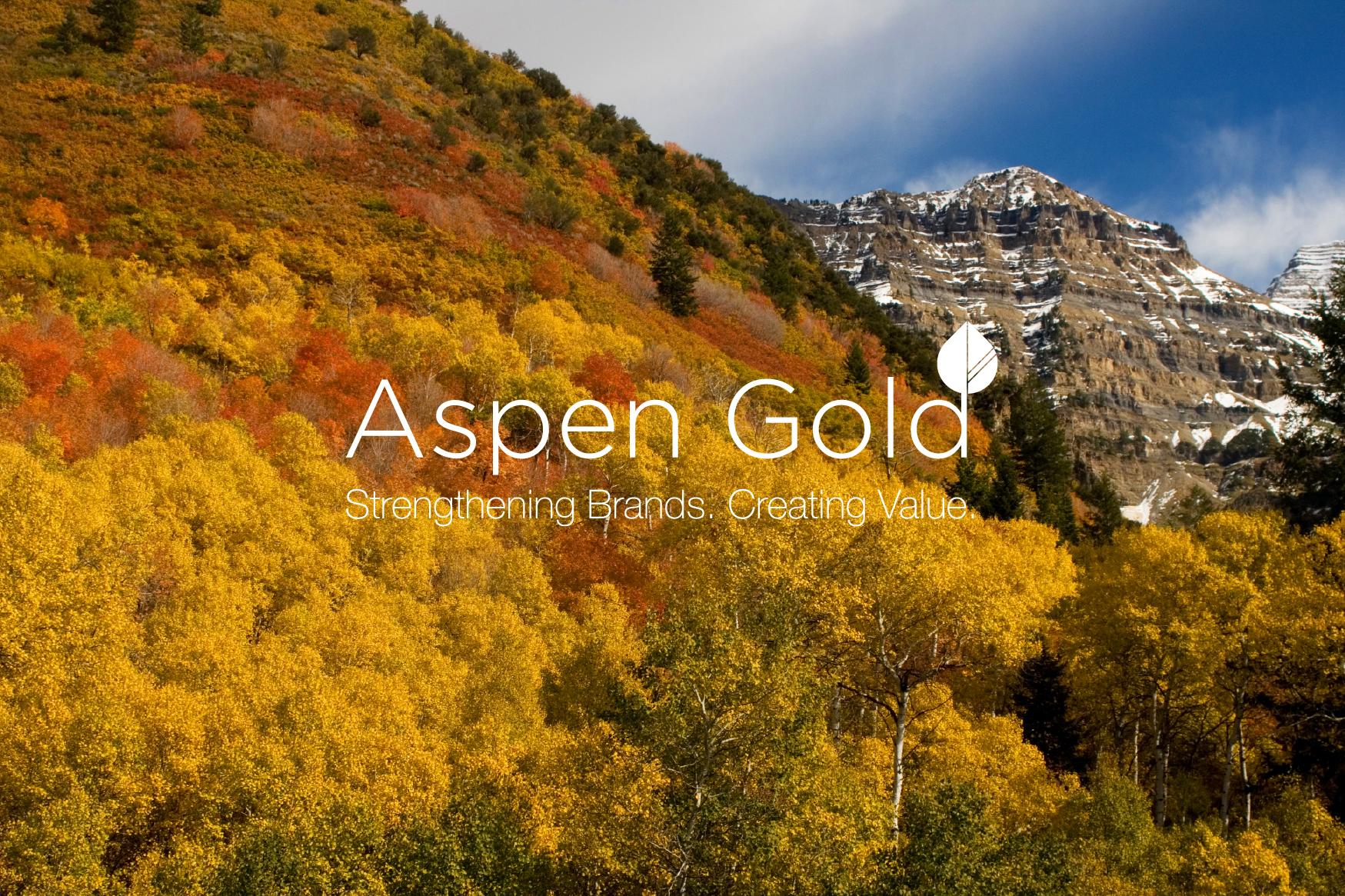 aspen_background1_web2.jpg