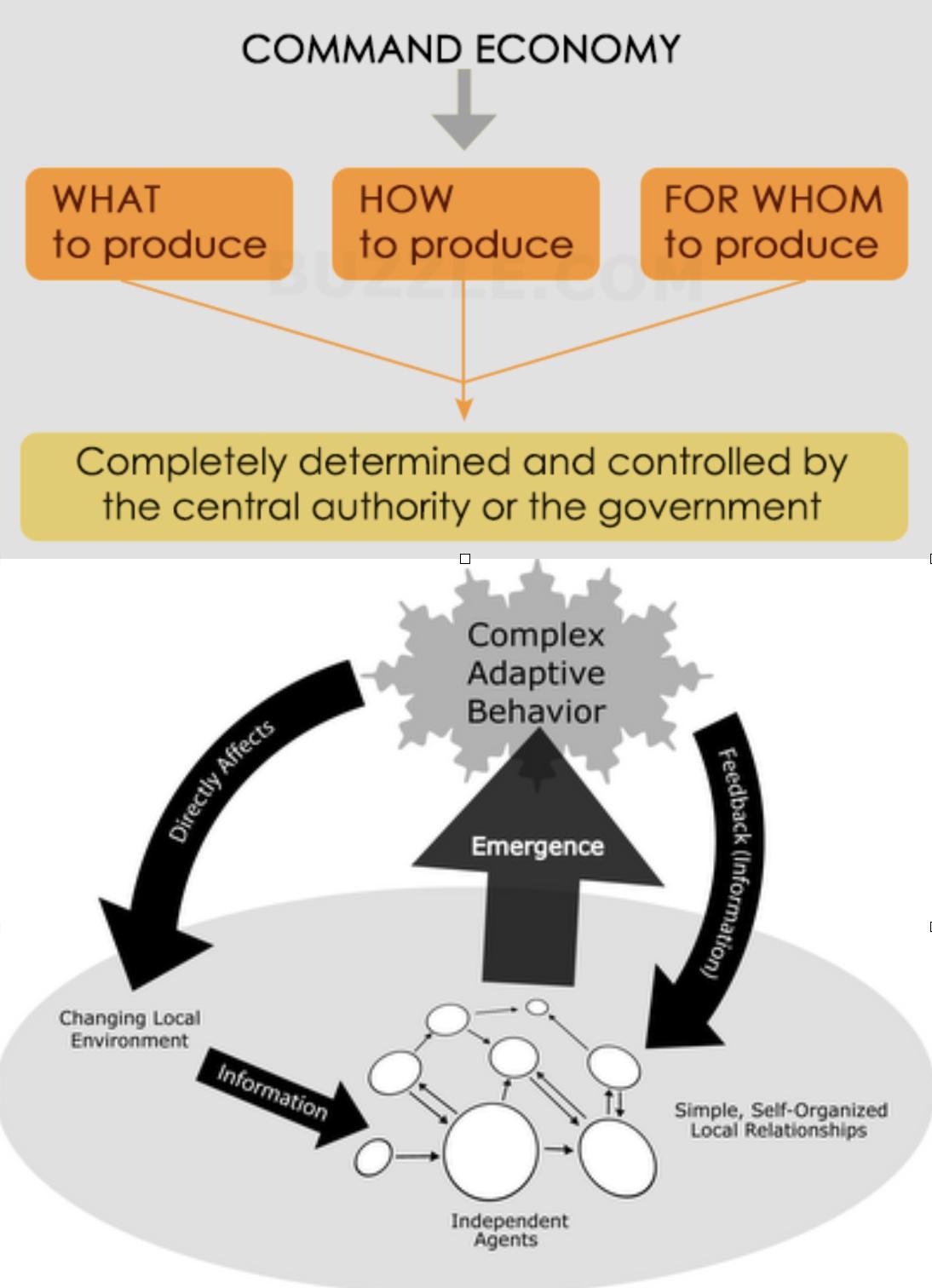 La planificación central en materia lleva inexorablemente al control de la sociedad.