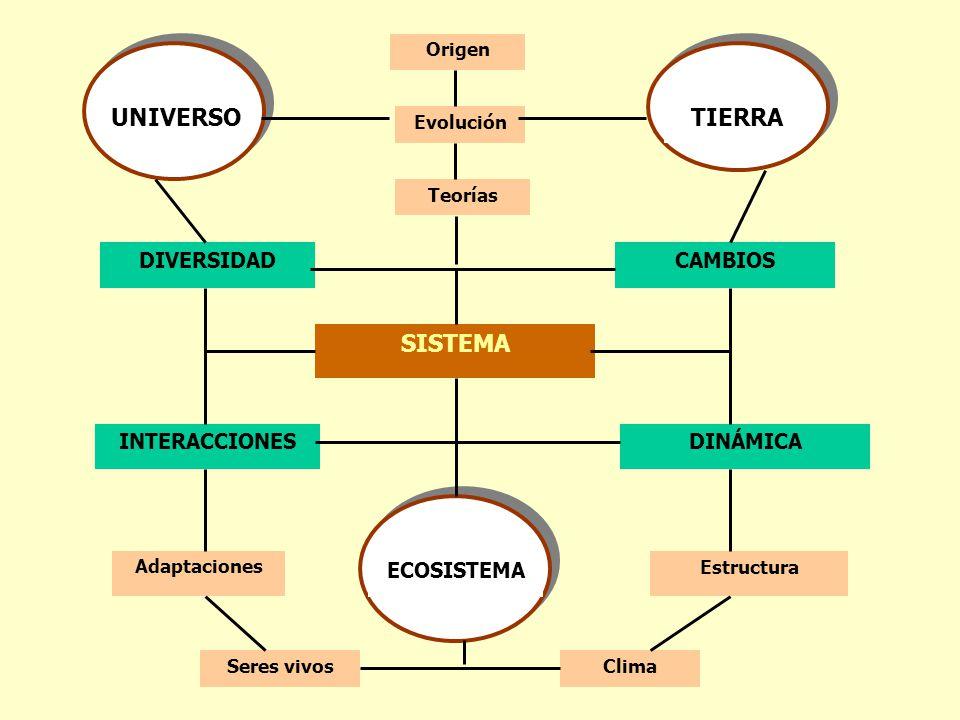 UNIVERSO+TIERRA+SISTEMA+DIVERSIDAD+CAMBIOS+INTERACCIONES+DINÁMICA.jpg