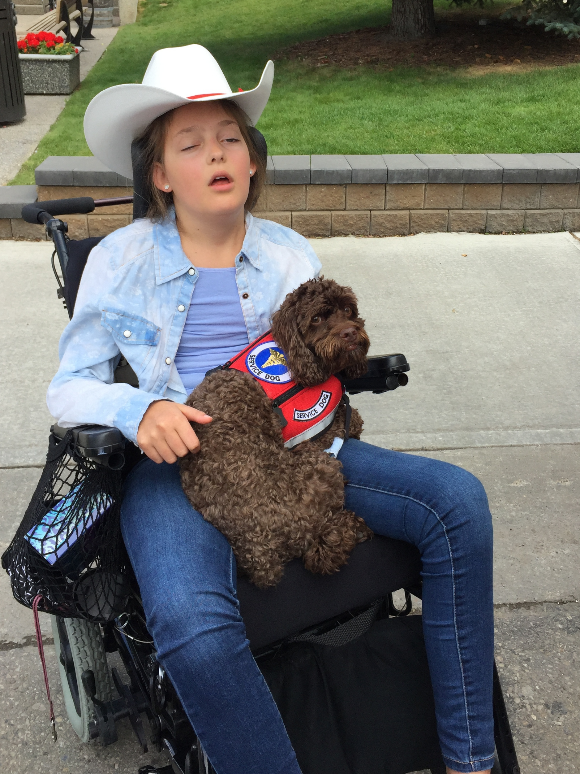 "Our Natasha (official Calgary ""white hatted"" from the Omi concert"", our ""service dog"" Ryder off to a bit of Stampeding, yesterday, rain or shine, nothing stops a cow girl from stampeding!"