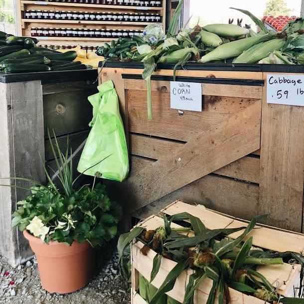 corn husks in box