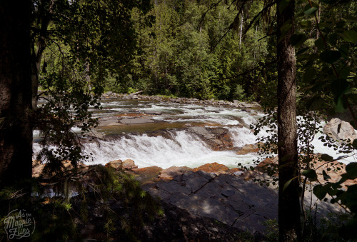 Yaak Falls, Montana