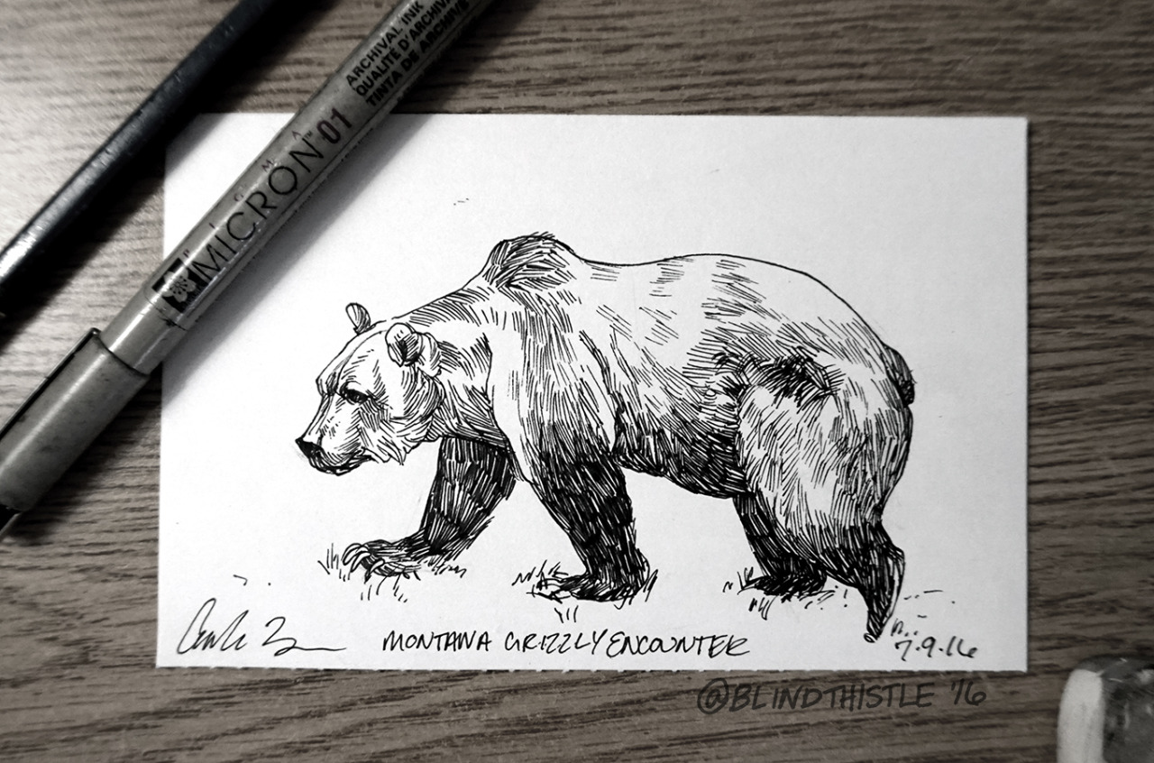 Trying to catch up on drawings in my hotel room in Helena, MT