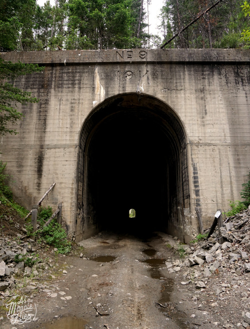 The majestic tunnel I met along one of the frontage roads, outside Butte, MT