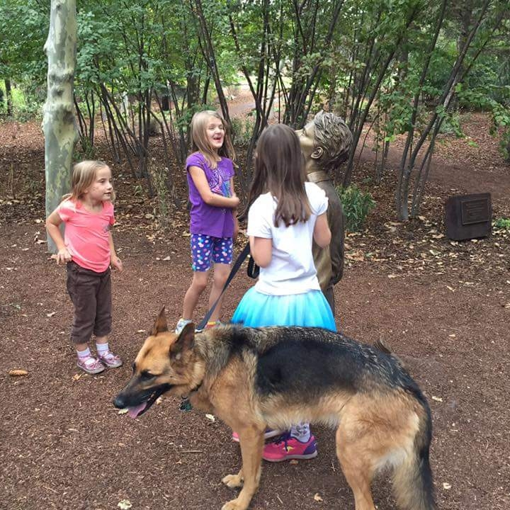 german-shepherd-dog-training-utah