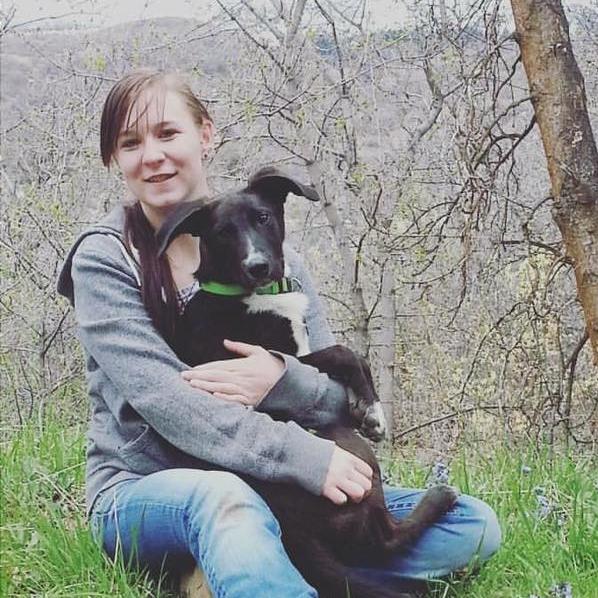 Dog Training Help near Mt Pleasant Utah | Bakers Acres K9 Academy