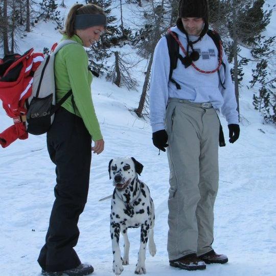 Dog Training Online | Bakers Acres K9 Academy