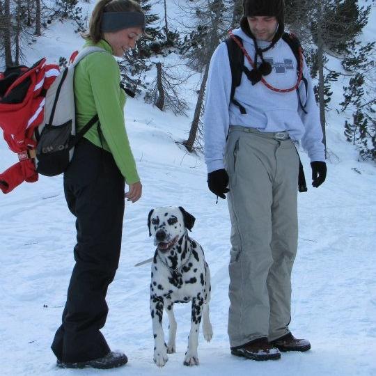 Off leash dog training | Utah County | Bakers Acres K9 Academy