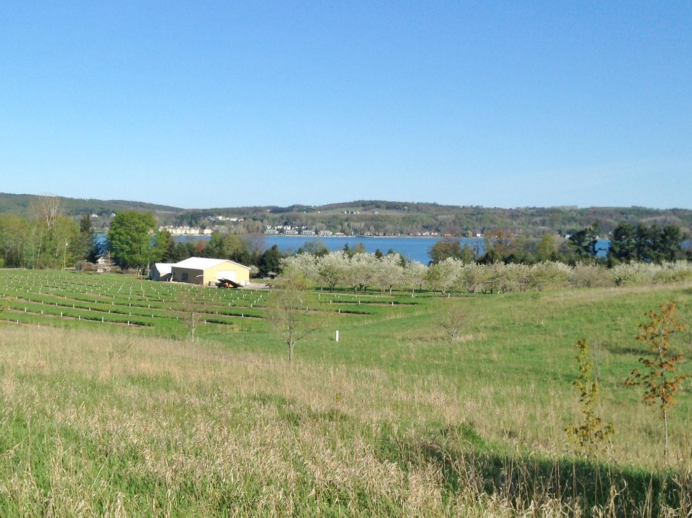760+S+Village+View+Suttons+Bay+Leelanau+County+Waterview+vacant+lot+for+sale+by+Oltersdorf+Realty+LLC+Leelanau+Realtors+18 (1).jpg