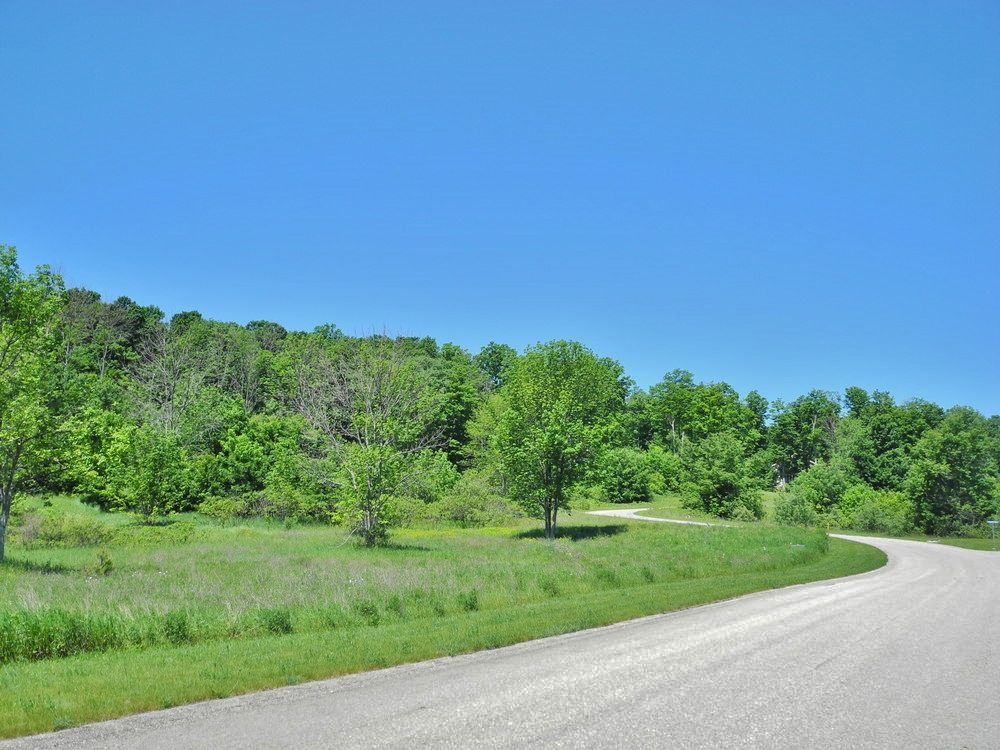 11638 E Belanger Woods Drive, Suttons Bay, MI, Leelanau County vacant land with water views of Grand traverse Bay, for sale by Oltersdorf Realty LLC, Leelanau County Realtors Vicky & Jonathan Oltersdorf (3).JPG