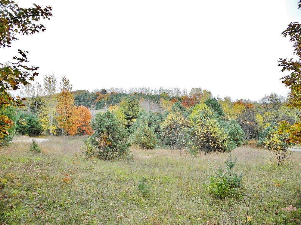8350 E Horn Road, Lake Leelanau Vacant land for sale near Suttons Bay by Oltersdorf Realty LLC Realtors (3).JPG