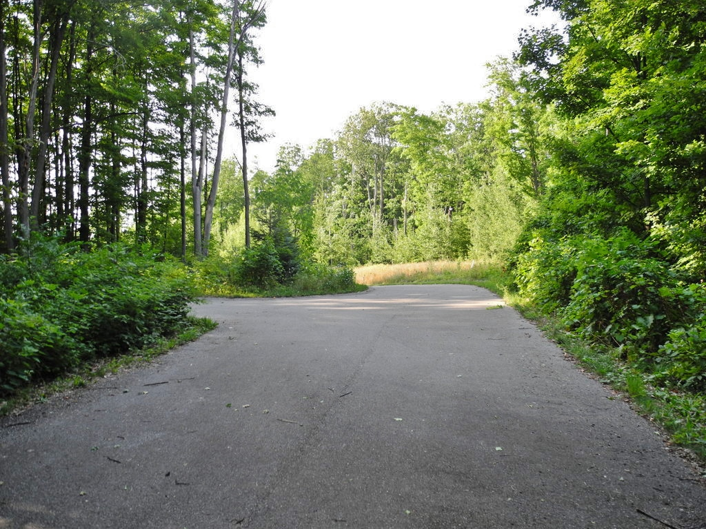 2101 N Our Majestic Trail, Suttons Bay - FOR SALE by Oltersdorf Realty LLC (12).JPG