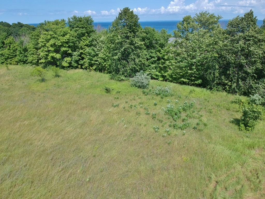 N Nanagosa Trail, Suttons Bay, MI - ~0.48 Acre Vacant Parcel on Stony Point near Water Access - For Sale by Oltersdorf realty LLC (1).JPG
