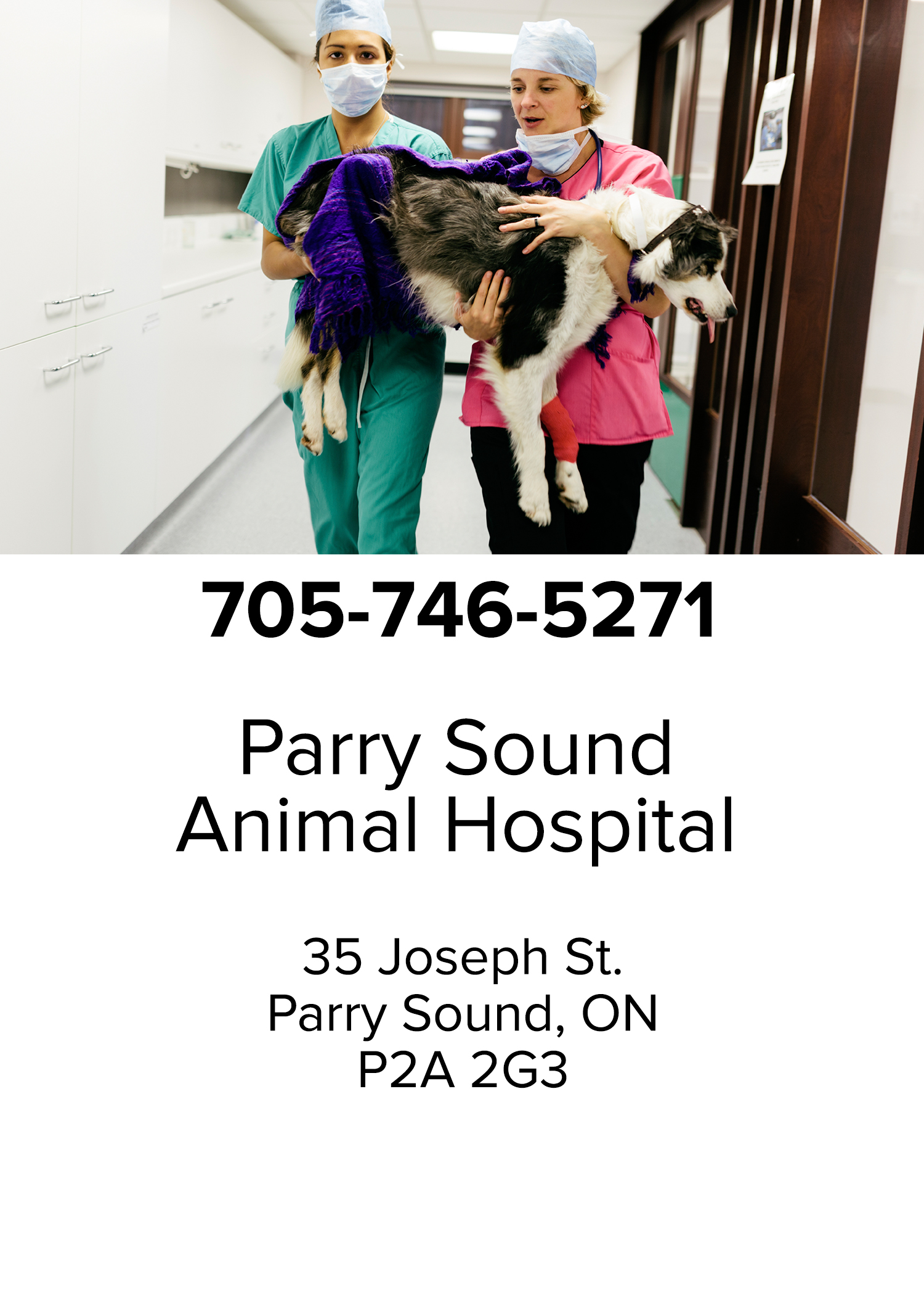 Parry Sound Animal Hospital