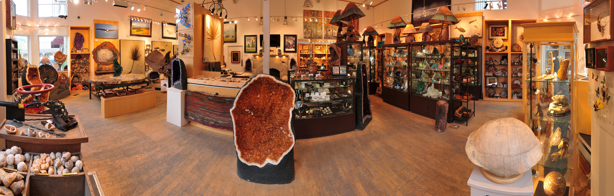 Jackson hole, WY Gallery