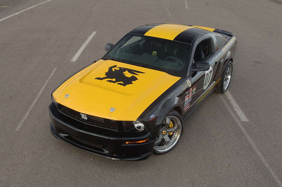 Mustang022.jpg