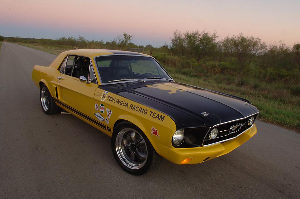 Mustang029.jpg