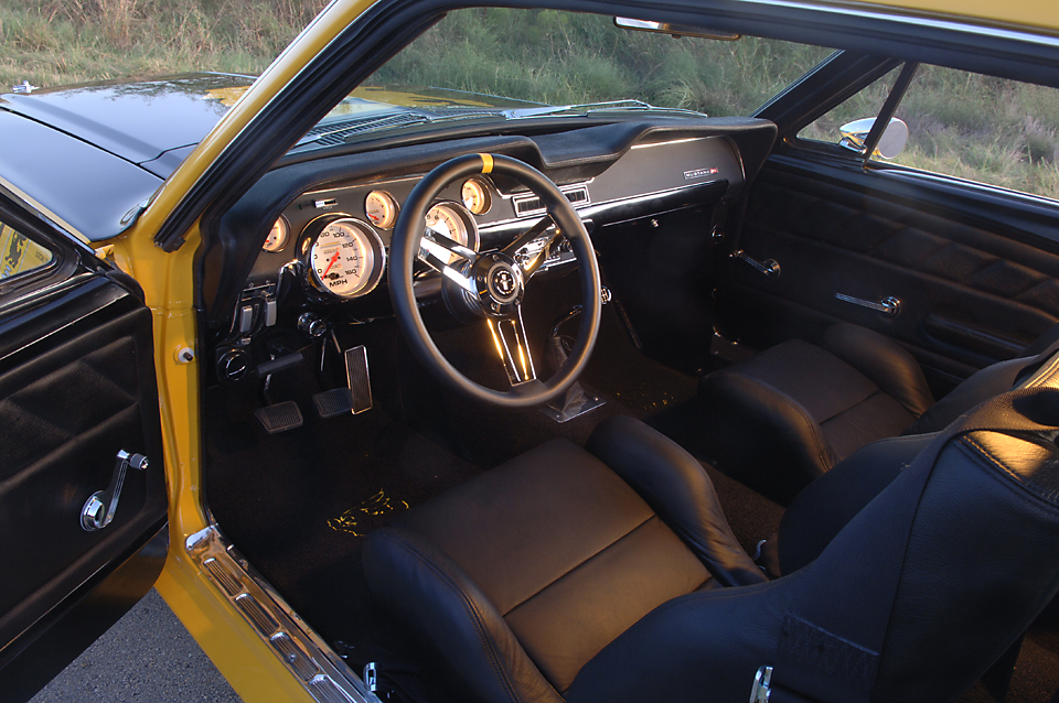 Mustang031.jpg